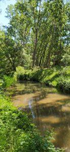 Río en la provincia de Segovia