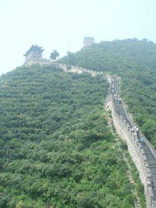 Bosque en la Gran Muralla China