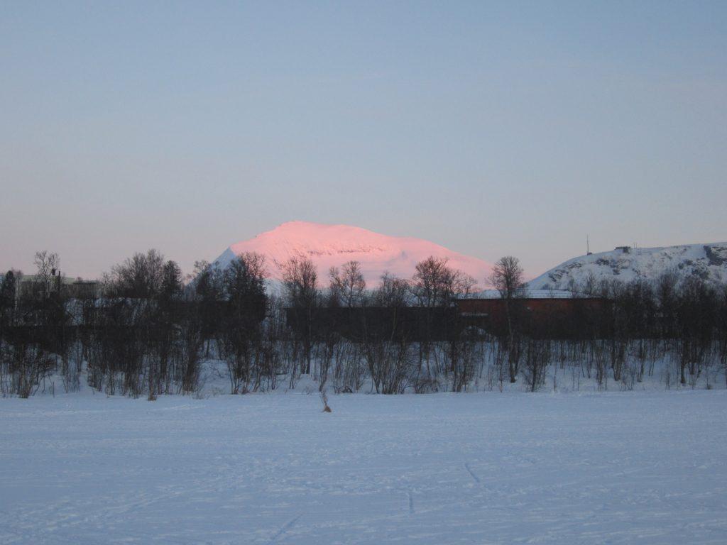 Bosque boreal en Tromso