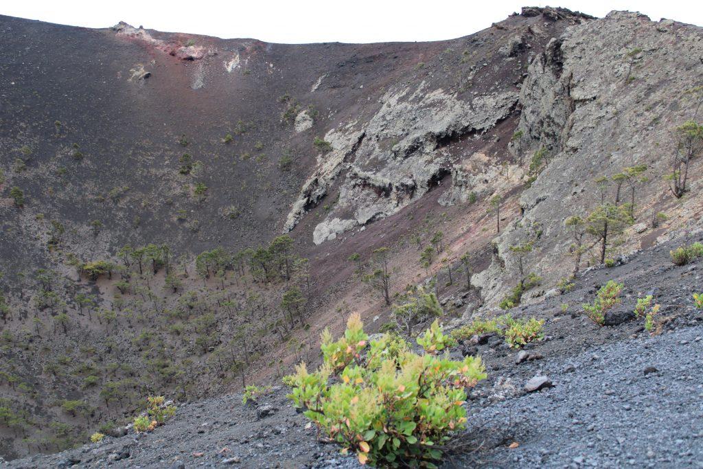 Cráter del Volcán de San Antonio