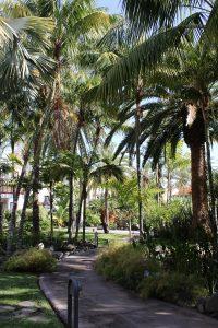 Jardín de la Hacienda San Jorge